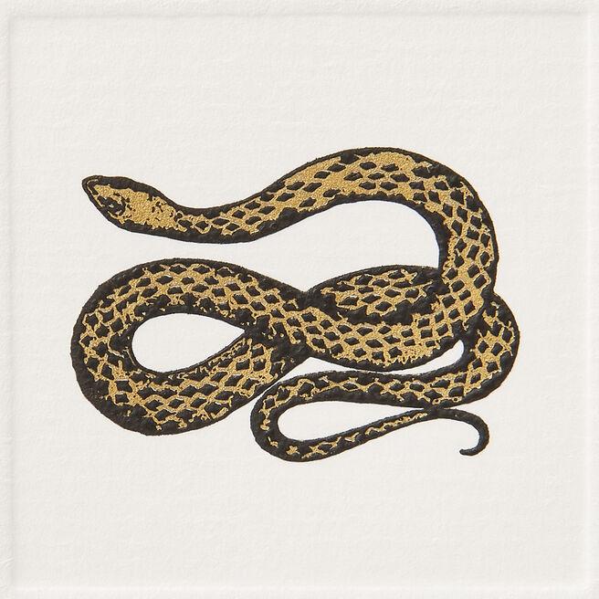 Snake Notelets