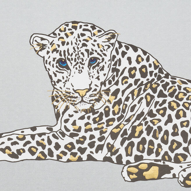 Leopard Correspondence Cards