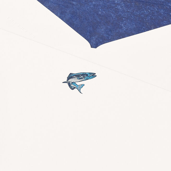 Trout Correspondence Cards