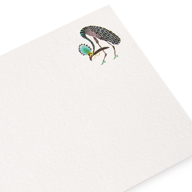 Bird with Feather Correspondence Cards
