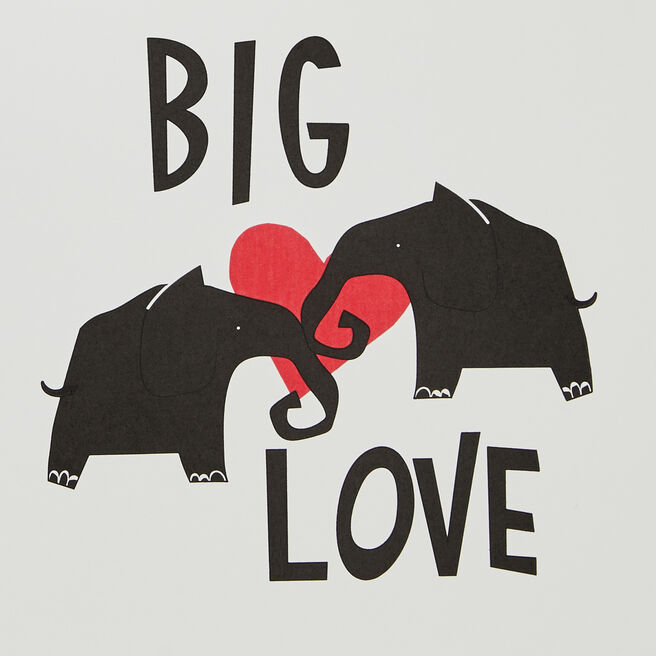 Big Love Valentine'S Card White